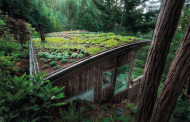 INTERNATIONAL GREEN ROOF CONVENTION IN ISTANBUL FOR THE FIRST TIME